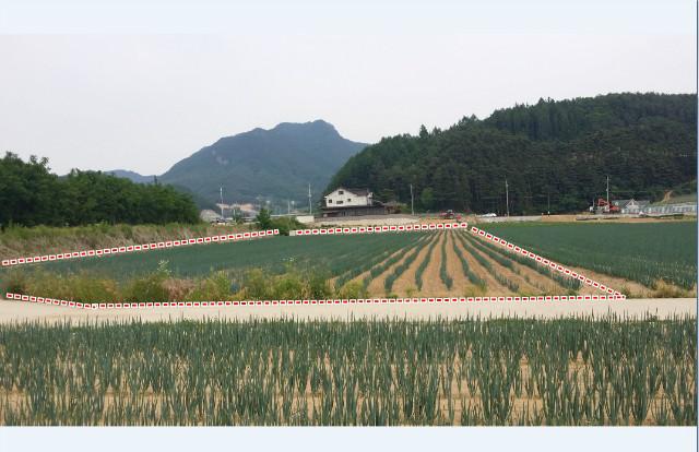 박영국21.jpg